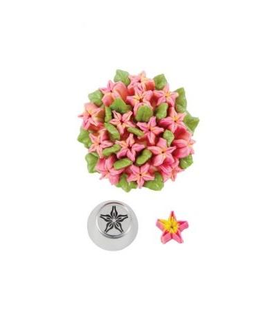 beccuccio russo fiore a stella decora