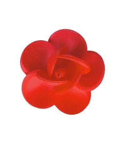 rosa ostia linda rossa