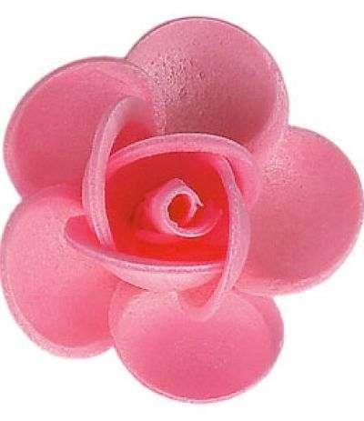 rosa ostia linda rosa