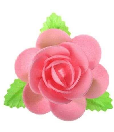 magnolia ostia rosa
