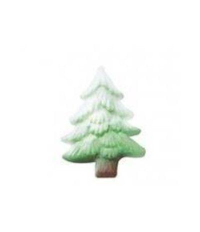pino di zucchero piccolo