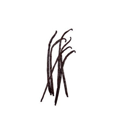 Bacche di Vaniglia- 4 gr