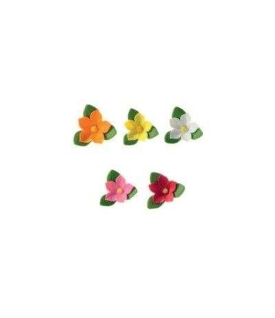 crocus di zucchero colori assortiti- 2,5 cm